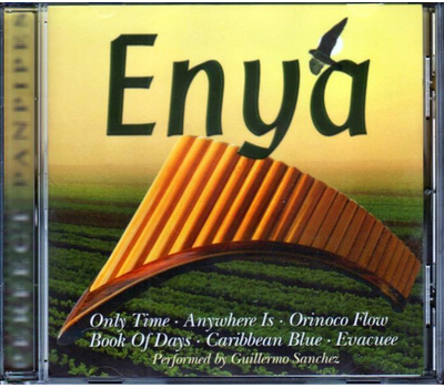 Perfect Panpipes - Enya - Instrumental