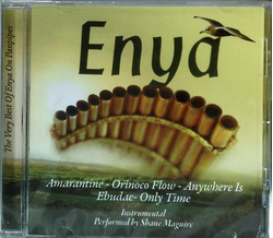 Shane Maguire - The very Best of ENYA on Panpipes...